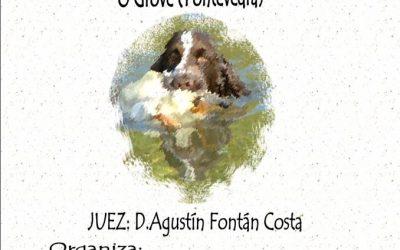 PRUEBA DE APTITUDES NATURALES (PAN)                 O GROVE (PONTEVEDRA)